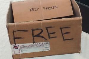 """Rachel Grobstein """"Free Box"""" detail"""
