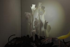 """Detritivores"" detail (ghost flowers) 2014 Kat Ely"